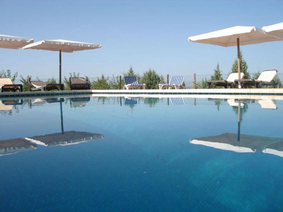 Huge Pool with seaviews