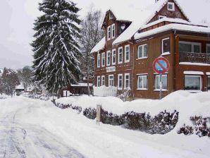 Harzhaus am Brunnen Ferienwohnung 4