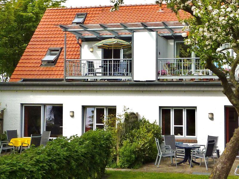 Ferienhaus Wattenblick, Lachmöve