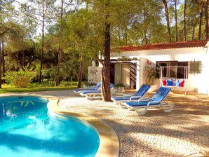 Villa CIP V5 Papa Figos