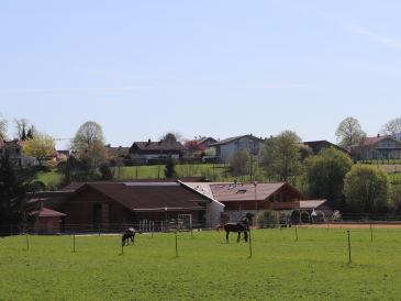 Ferienwohnung Pferdehof Pankratz