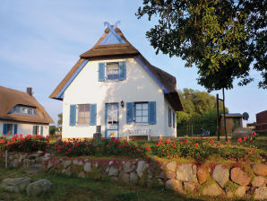 Ferienhaus Reetdachhaus Ahoi auf Poel