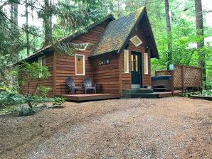 Holiday cottage Cabin #16 – HOT TUB, BBQ, PETS OK, SLEEPS-4!