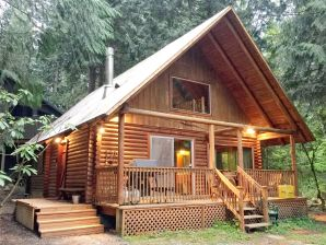 Holiday apartment Cabin #17 – REAL LOG CABIN, BBQ, PETS OK, SLEEPS-8!