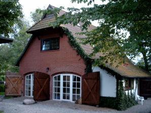 Ferienwohnung Aalhaus-Wustrow