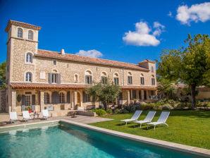 0304 Ferienhaus La Bastide de Charme 14P. Noves