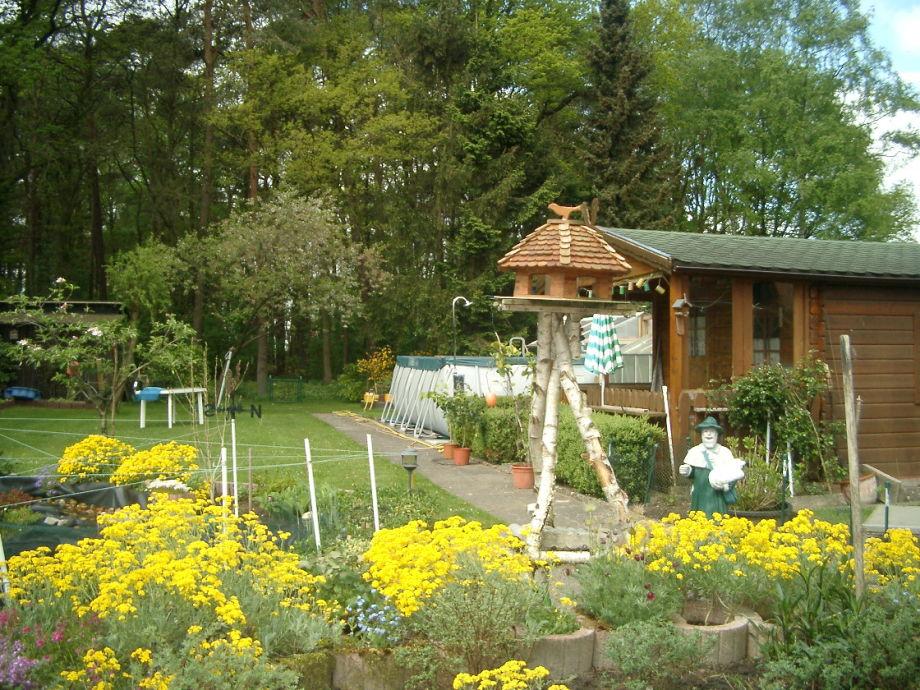 Garten mit Schwimmpool