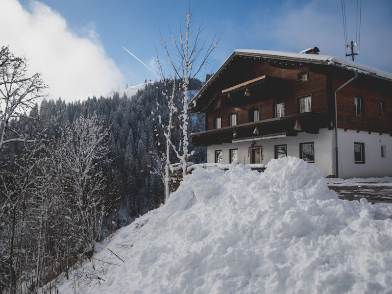 Ski lodge Almhof in Wagrain