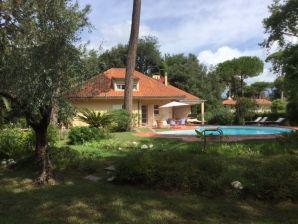 Villa Piero - 2587