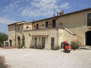 Ferienhaus in Montalcino mit Pool