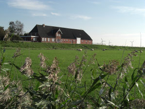 Holiday apartment in a frisian house