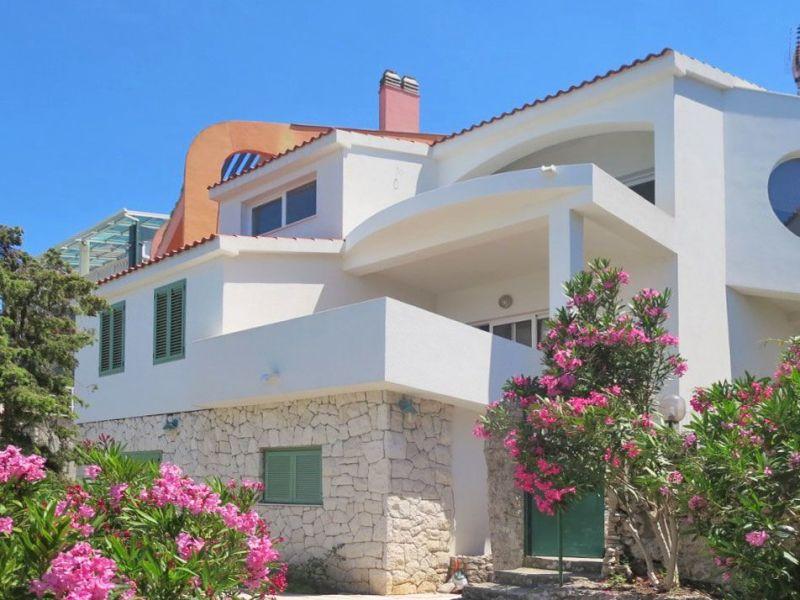 Holiday apartment Orhideja (40489-A1)