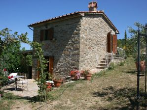 Ferienwohnung IT767 Subbiano, Toskana