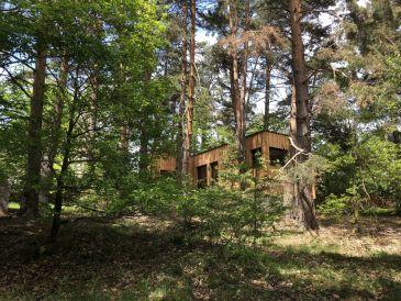 Ferienhaus Unter den Bäumen