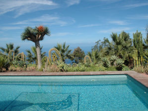 Ferienhaus für Familienurlaub - F255