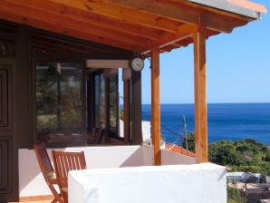 Ferienhaus mit Meerblick - F5482