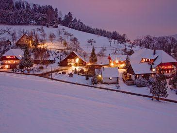 Ferienwohnung Waldblick Oberer Strickerhof