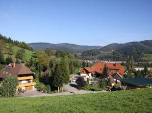Ferienwohnung Ferienhof Oberer Strickerhof Wohnung Bachblick