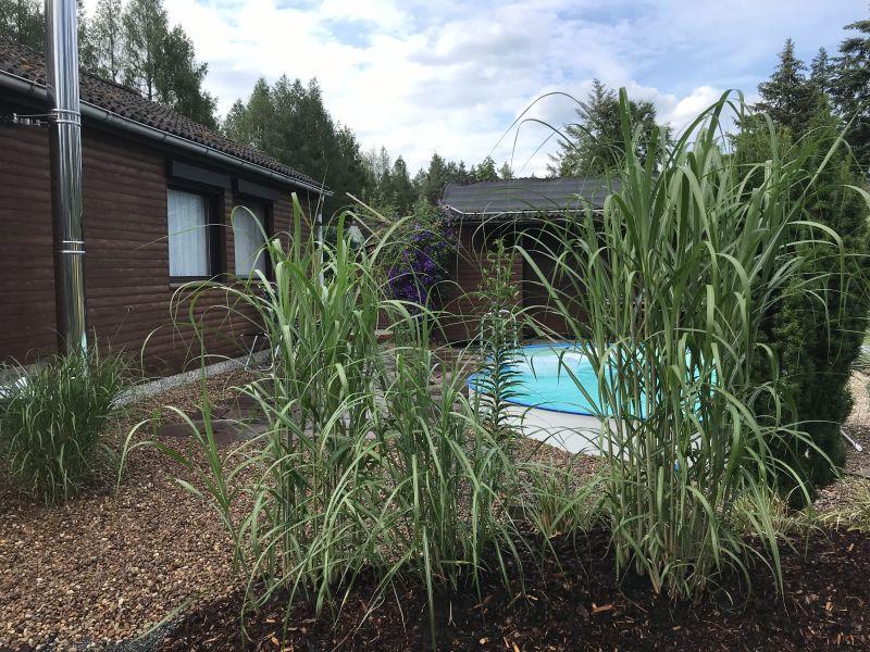 Ferienhaus Märchenwald mit Pool und Sauna Waldrandlage
