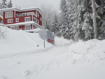 Ferienwohnung Schwedenhaus Eichenberg