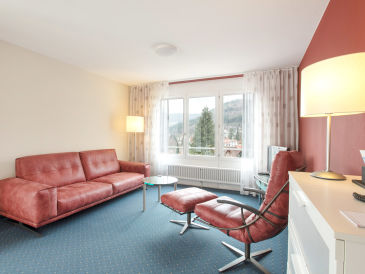 SCHWARZWALD PANORAMA - 3-Zimmer Apartment