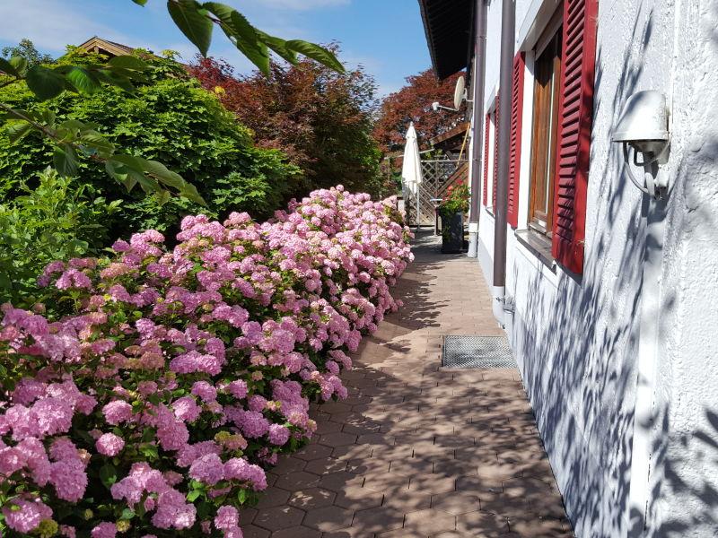 Ferienwohnung Chiemsee im Maderhof