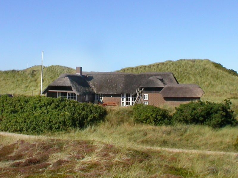 Ferienhaus Lynglihus (Ly92)