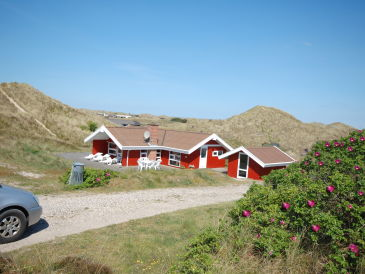 Ferienhaus Haus Dünental (V11)