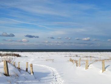 Ferienhaus Strandhaus - direkt am Meer