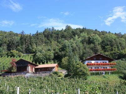 Apfelgarten am Masunerhof