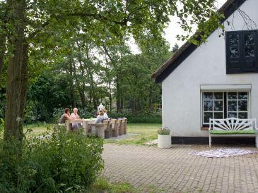 Ferienhaus Egmond Binnen Buiten 5 Personen 1