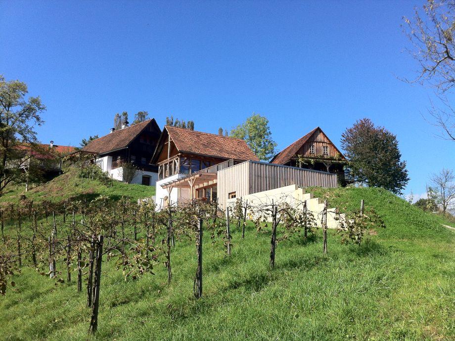 Zinnhof mit Weinberg