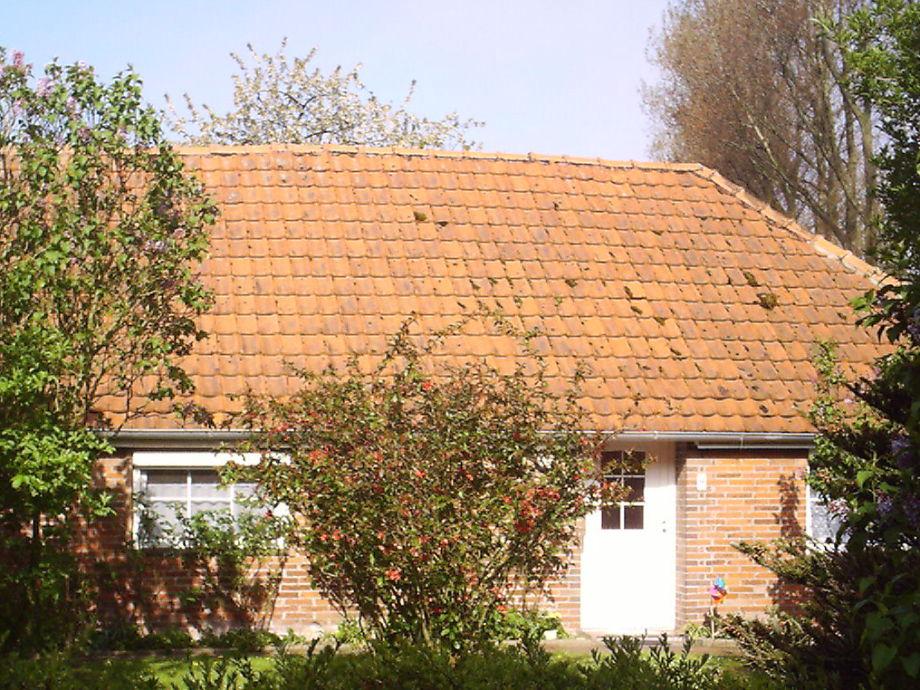 Ferienhaus Anne im Frühjahr