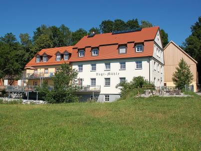 Vogt-Mühle - Eisvogel