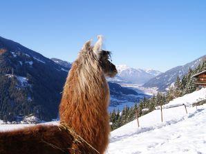 Ferienhaus Zillertal-Llamas