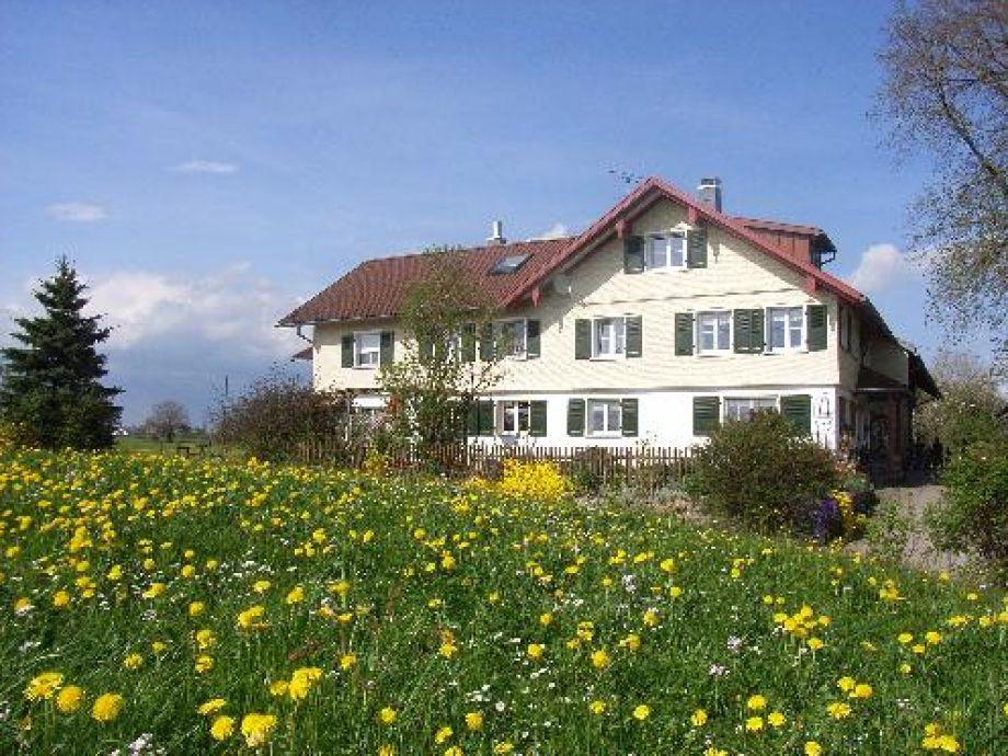 Unser Ferienhof inmitten von Löwenzahnwiesen.