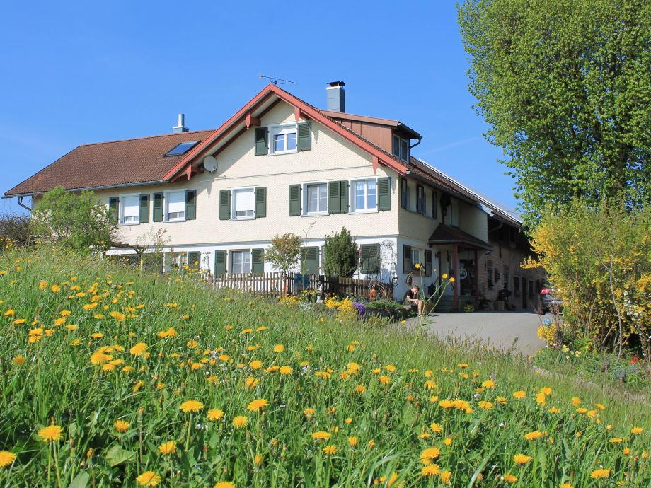 Unser Ferienhof umgeben von gelben Löwenzahnwiesen