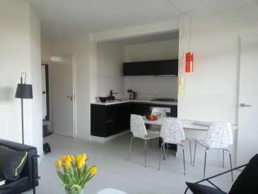 Holiday apartment Beach Loft De Duinpan 2.