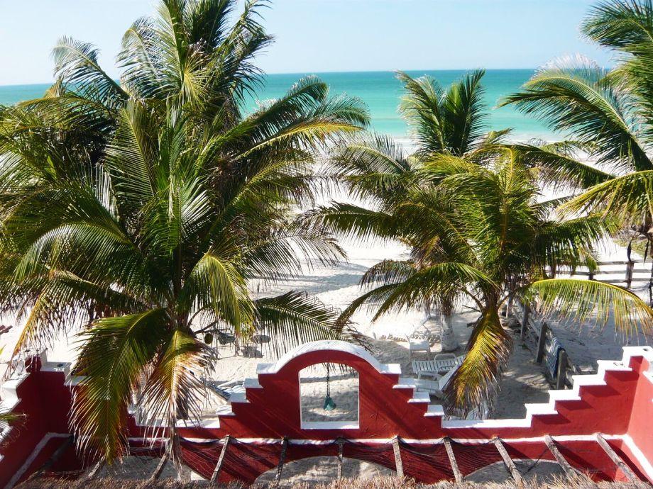 Blick vom Penthouse auf den Palmenstrand