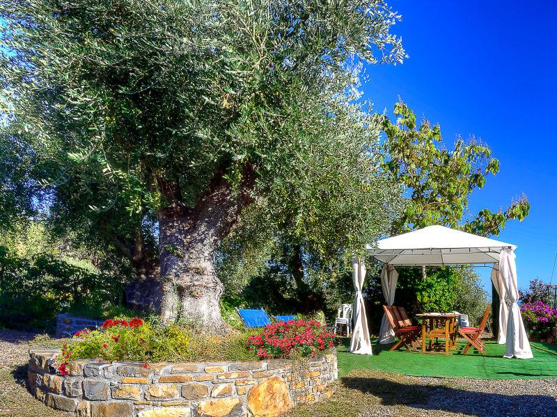 Holiday house Uliveto - Giardino
