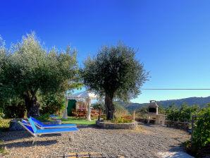 Villa Uliveto - Giardino