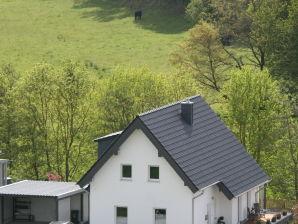Jonis Ferienhaus
