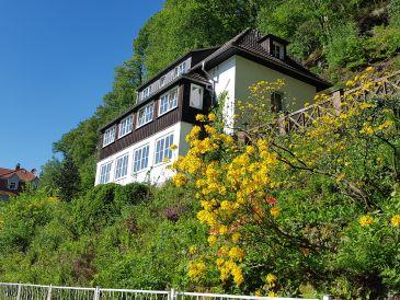 Ferienwohnung Haus Belvedere
