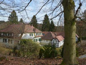 Landhaus Gutshaus Wilhelmsruh