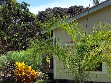 Villa Mango im Jamboland-Diani