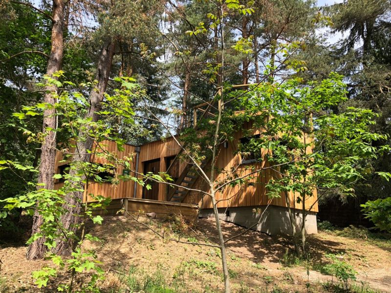 Ferienwohnung Sous les pins - chalet à droite