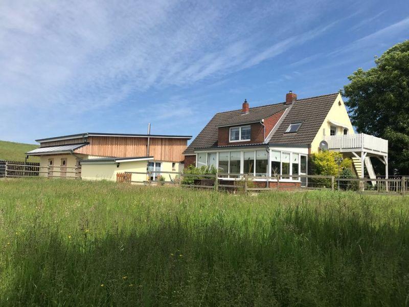 Ferienhaus Scharhörn