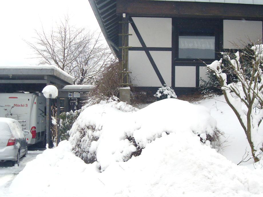 .... und im Winter