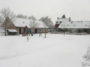 Holiday apartment & Campsite De Rozenhorst