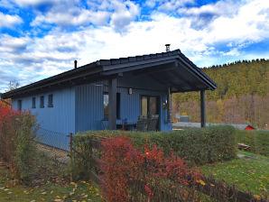 Ferienwohnung Harzgerode, Haus-Nr: DE-06493-27